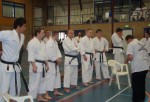 Kumite adults compitation